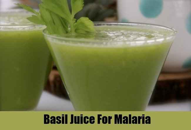 Effective Way To Treat Malaria Fever At Home | Malaria Home Remedies