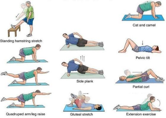 Slipped Disc Exercises   Home Remedies   Treatment at Home